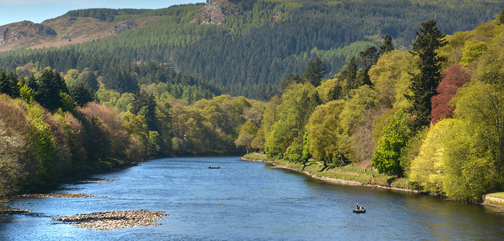 Salmon Fishing on Dunkelds Permits