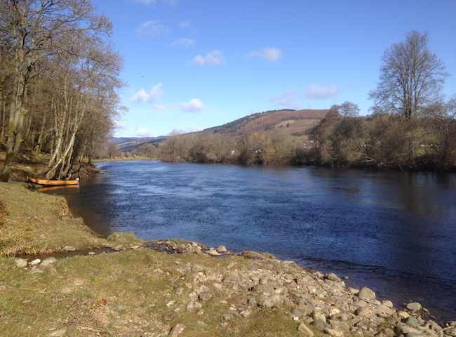 The River Tay During Spring