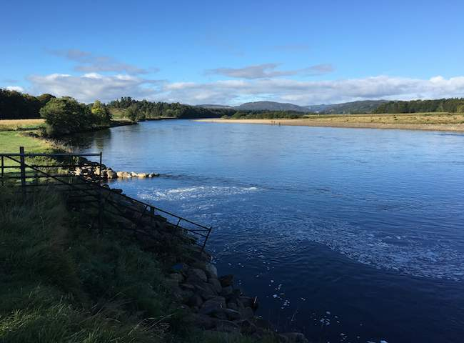 Autumn Salmon Fishing On The Tay