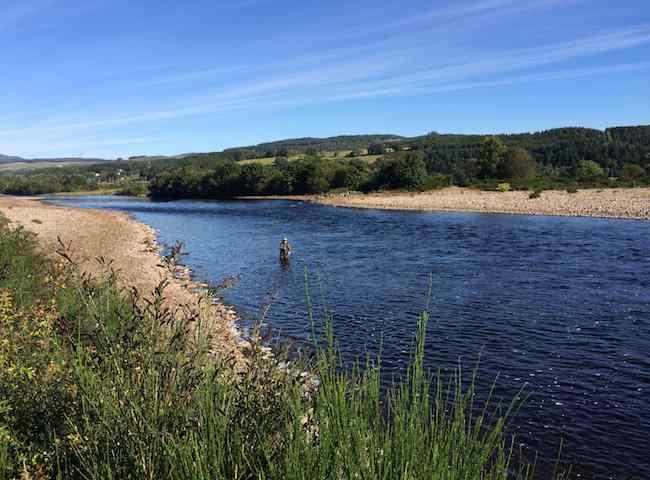 Fishing For Salmon In Scotland