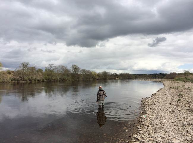 Book A Salmon Fishing Event In Scotland
