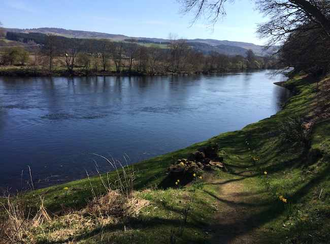 Scottish Spring Fishing For Salmon