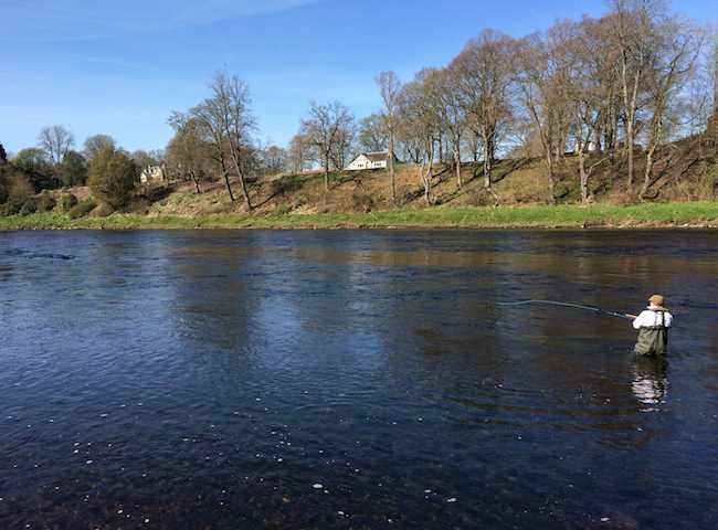 Fishing On The Mighty River Tay