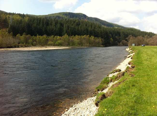 Fishing For Salmon On The River Tummel
