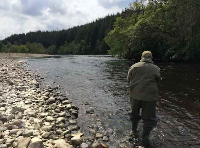 Fishing The Fly For Salmon