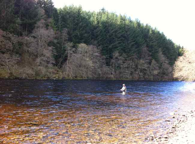 Where To Find Your First Salmon