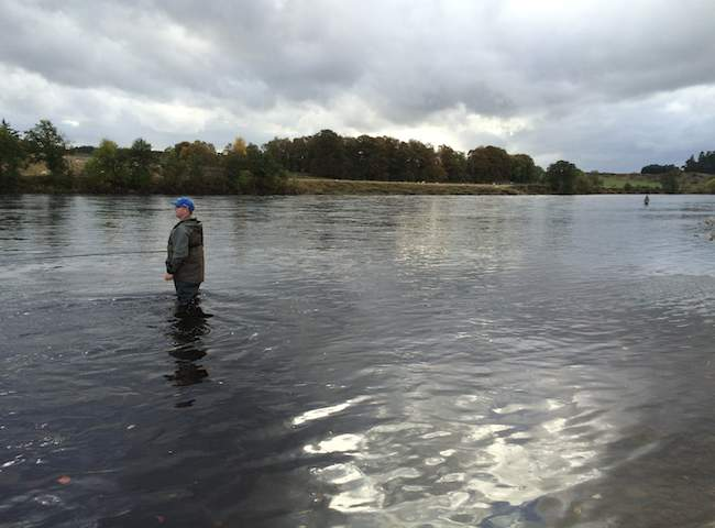 Riverbank Movement For Salmon