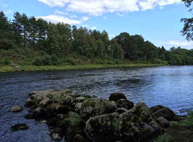The Famous River Dee Salmon Beats