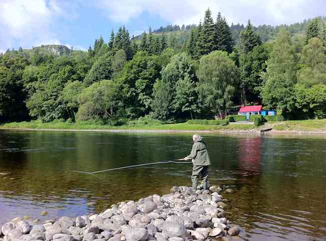 Learn How To Fish For Salmon