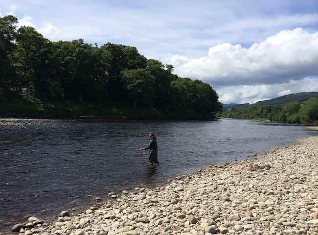 Catch A Scottish Salmon