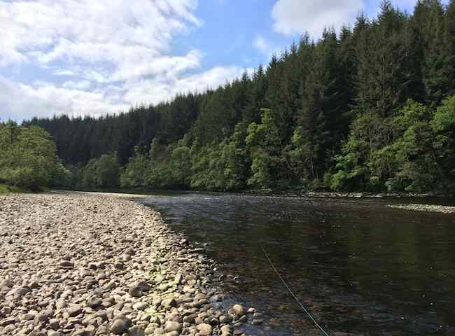 Fishing The Fly Effectively