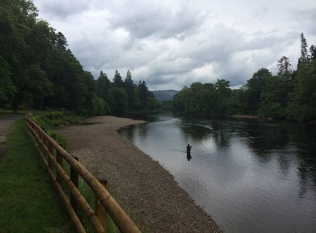 Entertain Your Colleague On The Salmon River