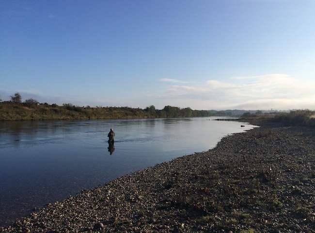 Autumn Salmon Fishing In Scotland
