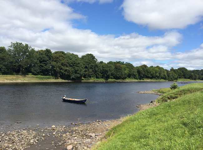 Looking For Scottish Salmon Fishing