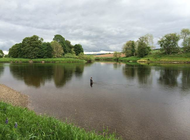 The Lower River Tay