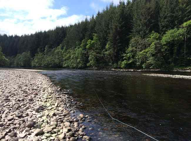 Effective Salmon Fly Fishing
