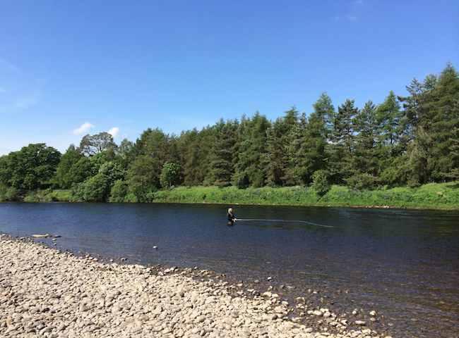 Scotland's Salmon Fishing Rivers
