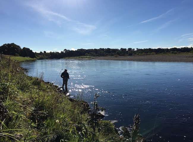 Summer Salmon Fishing Events