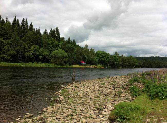 Scotland's Beautiful Salmon Fishing Rivers