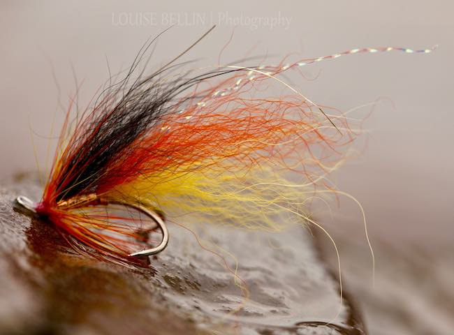 Selecting Your Salmon Fly