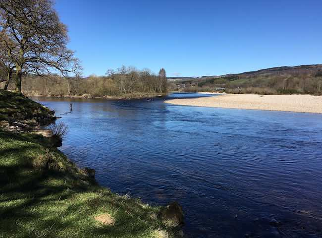 Fishing The Tay For Atlantic Salmon
