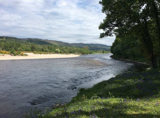The Natural Beauty Of The River Tay