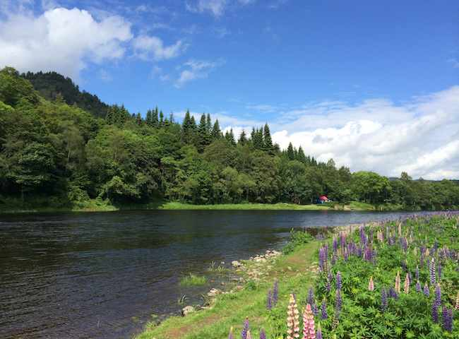 Scottish Salmon Fishing Venues