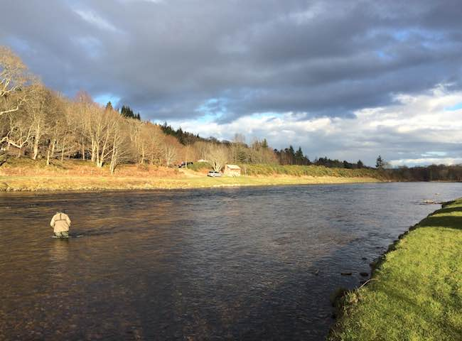 Scottish Riverbank Perfection