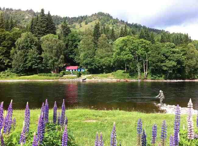 River Tay Salmon Fishing Huts