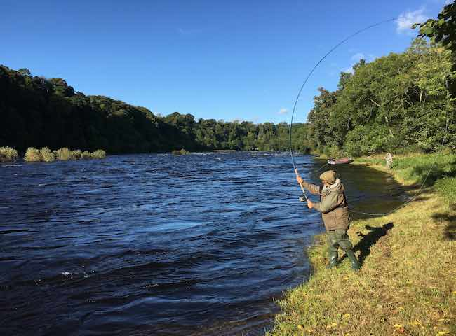 Learning How To Salmon Fly Fish