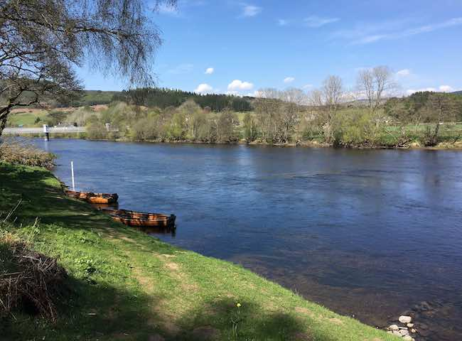 Spring Salmon Fishing Events