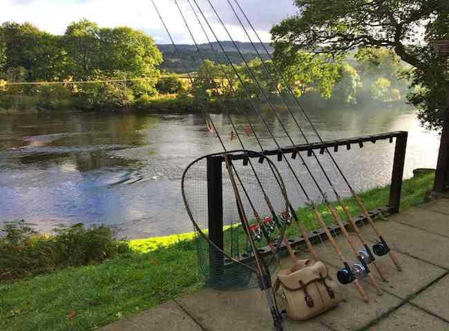 Perfect Fishing Day Preparation