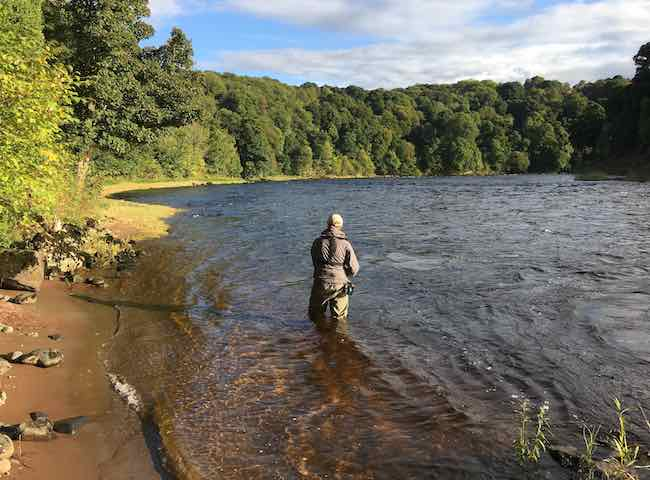 Scottish River Perfection