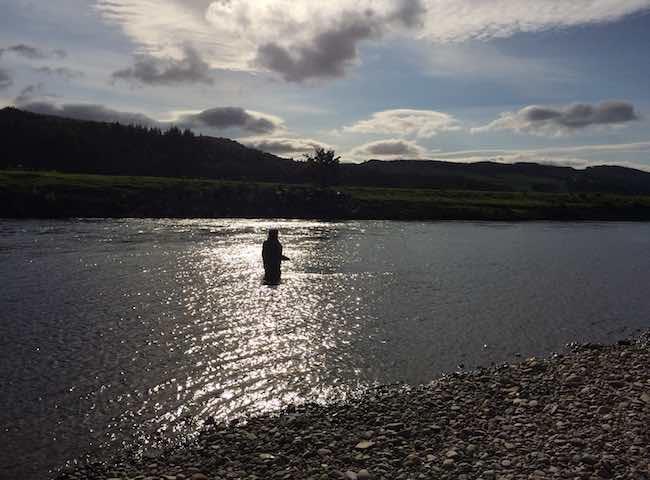 Salmon Fishing Ambiance