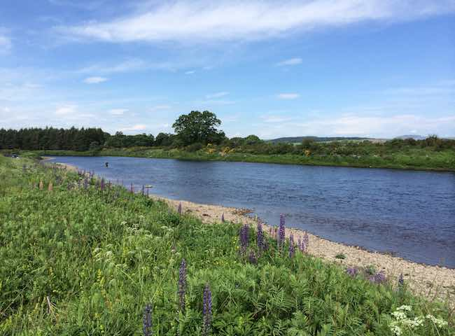 The Beautiful Scottish Salmon Rivers