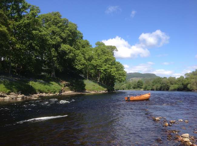 Salmon Fishing Tuition On The River Tay