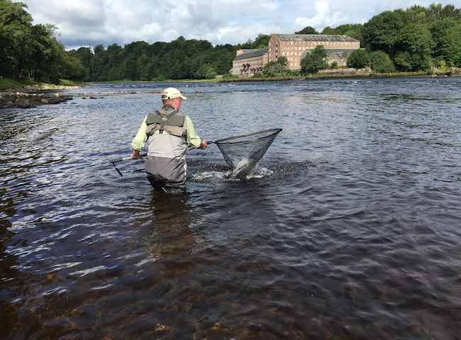 The Perfect Angling Moment