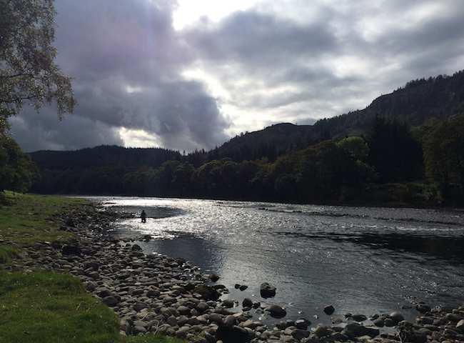 Salmon River Ambiance