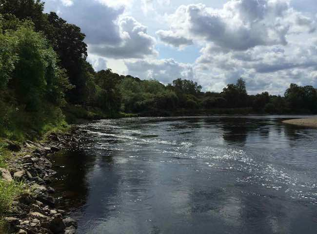 River Tay Salmon Pools
