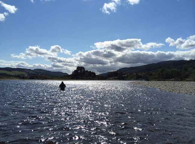 River Tay Fishing Beauty