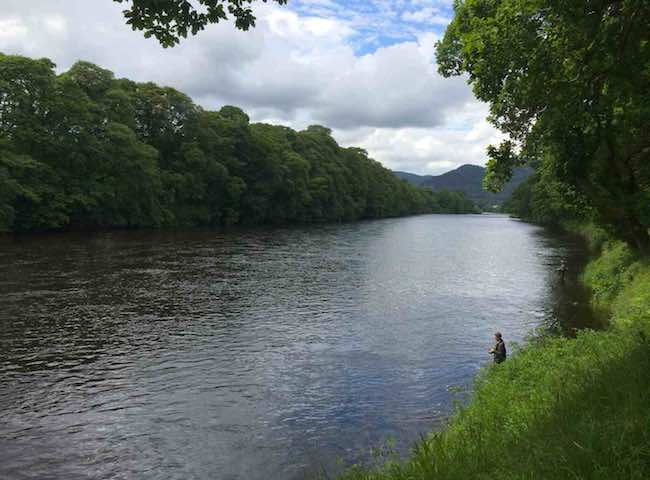 River Tay Salmon Fishing