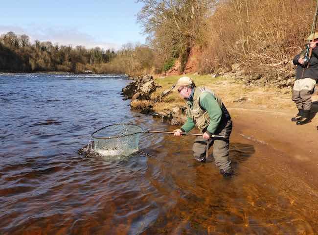 Landing A Tay Salmon