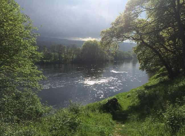 The Natural Scottish Pursuit