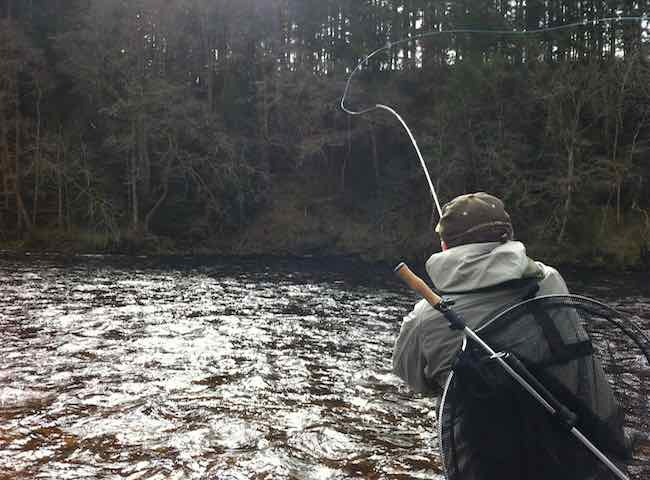 Learning To Fly Fish