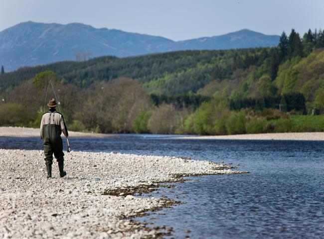 Scotland's Finest Salmon River