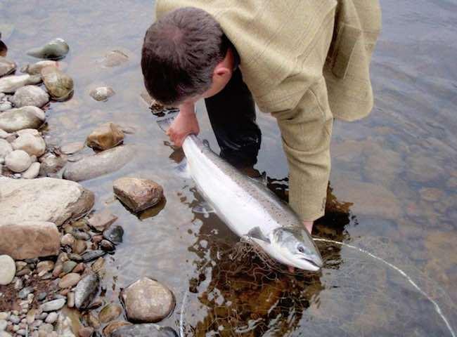 Salmon Fishing Hospitality Events