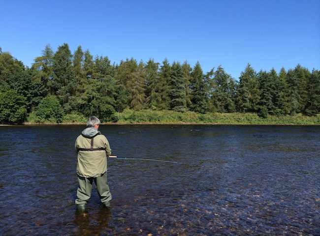 Learning The Art Of Salmon Fishing