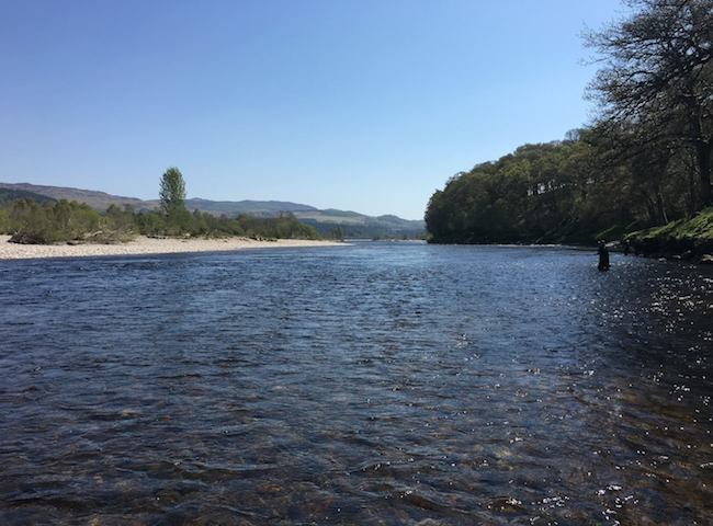 Summer River Tay Fishing