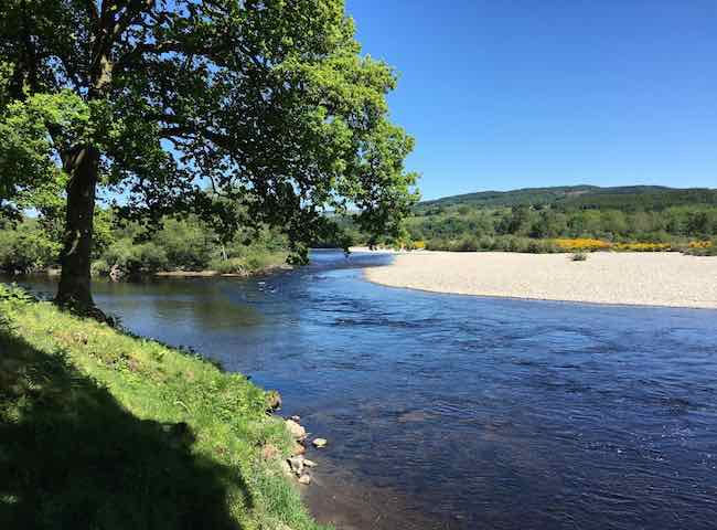 River Tay Salmon Fishing Hot Spots
