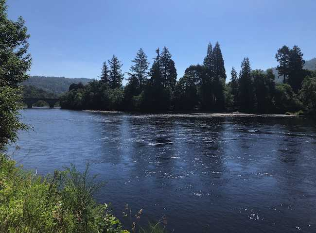 River Tay Salmon Pools